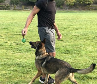 Ken Carpenter Training Defense