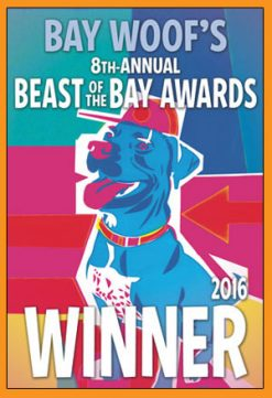 Dog Dynamics Best Dog Trainers San Francisco East Bay
