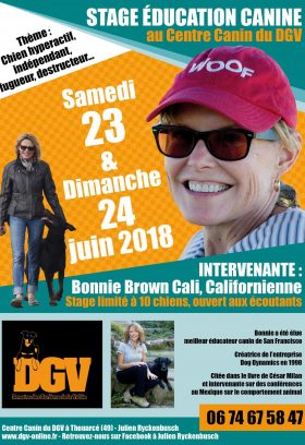 Seminar in France Help for Reactive Dogs and Social Obedience