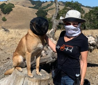Hike Briones Outfox Mask for Foxtail protection