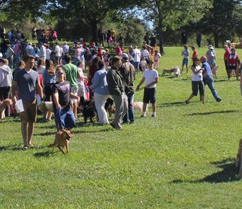 Moraga Fourth of July Dog Parade